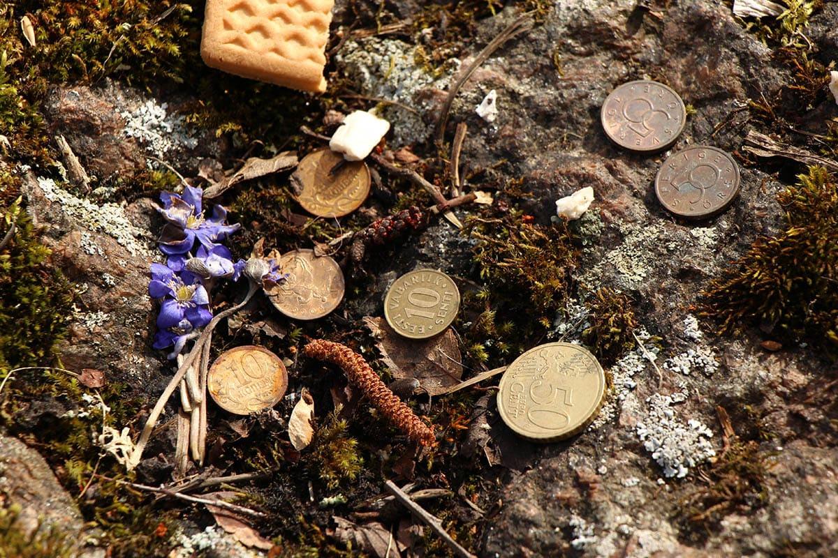 Kassinurme mündid